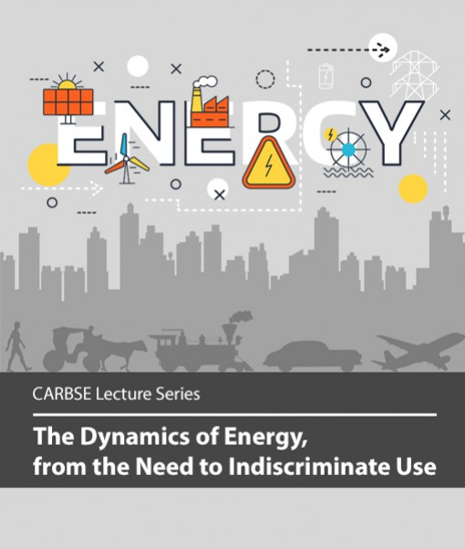 The Dynamics of Energy, from the Need to Indiscriminate Use