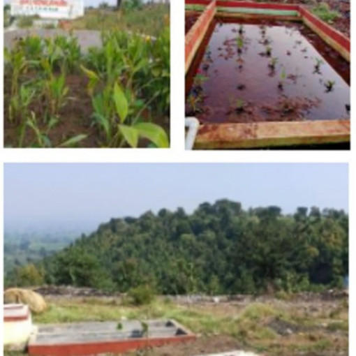 CWAS supports 160 functional FSTPs in Maharashtra