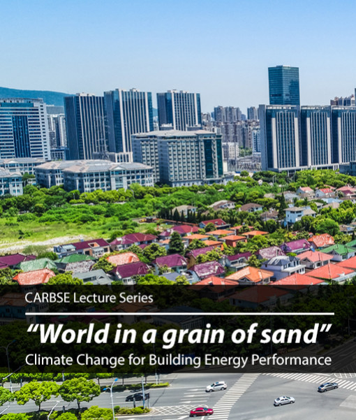 """""""World in a grain of sand"""": Climate Change for Building Energy Performance"""